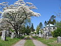 Sleepy hollow cemetery.jpg