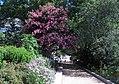 Smithsonian Gardens in July (19900031338).jpg