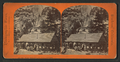 Snow's Hotel, Yosemite Valley, California, by Reilly, John James, 1839-1894 2.png
