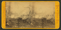 Solitude, from Robert N. Dennis collection of stereoscopic views.png