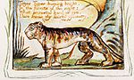 Songs of Innocence and of Experience copy Y object 42 The Tyger-Detail.jpg