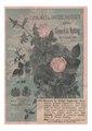 Soupert & Notting 1889 avec la rose Souvenir de Victor Gautreau.pdf