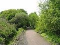 South Tyne Trail - geograph.org.uk - 178099.jpg