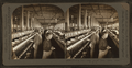 Spooning Yarn, Dallas Cotton Mills, Dallas, Texas, U.S.A., by Singley, B. L. (Benjamin Lloyd).png