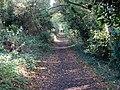 Springhead Lane - geograph.org.uk - 1553840.jpg