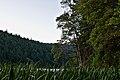 Squaw Lakes, OR (DSC 0218).jpg