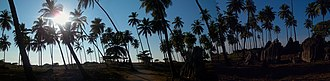 St. Mary's Islands - Panoramic view of palm trees at St. Mary Island