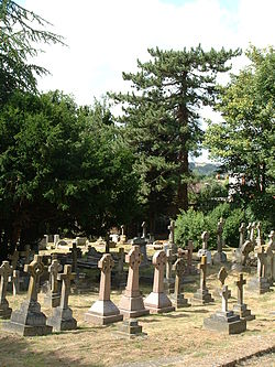 The churchyard of St. Martin's Church