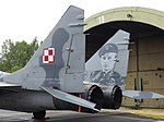 Stanislaw Skalski auf MiG-29.jpg