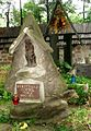 Stary Cmentarz na Pęksowym Brzyzku - Pęksowy Brzyzek National Cemetery - Zakopane, Poland - panoramio (3).jpg