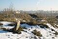 Stary cmentarz żydowski Lublin 08.jpg