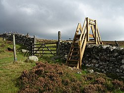 Stile on Cateran Trail - geograph.org.uk - 246951.jpg