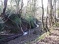 Stream, Old Hill, Christchurch - geograph.org.uk - 1772465.jpg