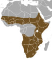 Striped Polecat area.png