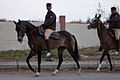 Studfarm in Turkmenistan - Flickr - Kerri-Jo (119).jpg
