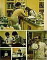 Sub turri - Under the tower - the yearbook of Boston College (1980) (14578585370).jpg