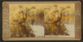 Sulphur Springs, from Robert N. Dennis collection of stereoscopic views.png