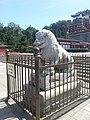 Summer Palace Lion Statue (21011782029).jpg