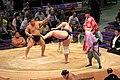 Sumo tournament (15528357117).jpg