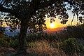 Sunrise in Towsley Canyon (34977666604).jpg