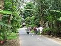 Sur la route d'Ubud - panoramio.jpg