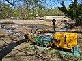 Swan pond reshaping 2014 - 2015 (2261).jpg