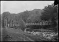 Swing bridge over the Tunanui Stream near Morere, Wairoa District. ATLIB 291883.png