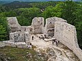 Szlak Orlich Gniazd 012 - Zamek Smoleń.jpg