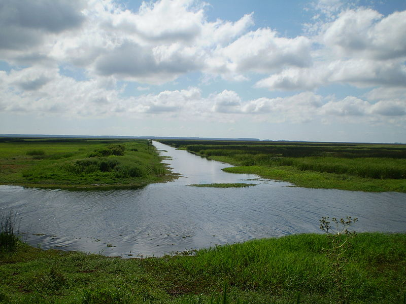Estação Ecológica do Taim. Foto: Wikipedia