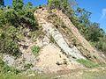 Talaingod-San Fernando Road - panoramio (93).jpg