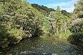 Te Waikoropupu River.jpg