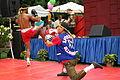 Thai Village 2014 (14692970994).jpg