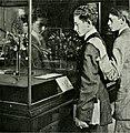 The American Museum journal (c1900-(1918)) (17539553513).jpg