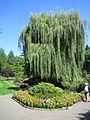 The Butchart Gardens (Sunken Garden) (16.08.06) - panoramio - sergfokin (5).jpg