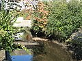 The River Ravensbourne (5) - geograph.org.uk - 1081524.jpg