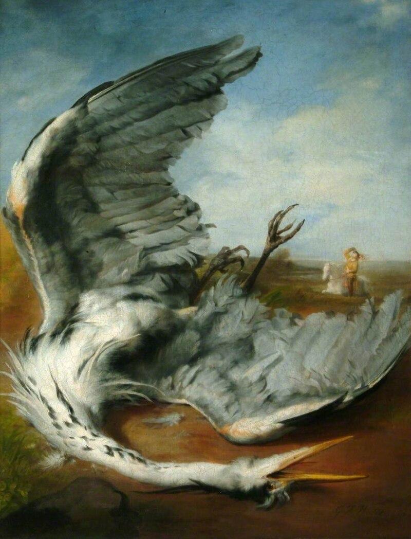 Pongan un cuadro en su vida - Página 8 800px-The_wounded_heron