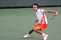 Thomaz Bellucci Indian Wells.jpg