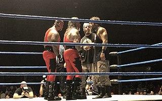 Thunder and Lightning (professional wrestling)