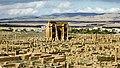Timgad تيمقاد - panoramio - habib kaki (6).jpg