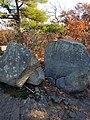 Tippling Rock in Sudbury Massachusetts near Nobscot Hill Reservation.jpg