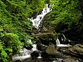 Torc Waterfall, Killarney National Park - geograph.org.uk - 16108.jpg