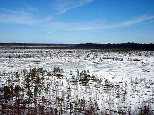 Torronsuo National Park in Tammela, Finland