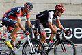 Tour de France 2016 Stage 21 Paris Champs-Elysées (27934283043).jpg