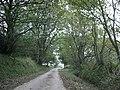 Tree-lined road by Lochturffin - geograph.org.uk - 2125608.jpg