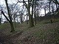 Trees in London Road Gardens - geograph.org.uk - 1727220.jpg
