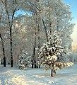 Tsentralnyy rayon, Krasnoyarsk, Krasnoyarskiy kray, Russia - panoramio (26).jpg