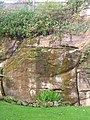 Tunbridge Wells sandstone Cliff - geograph.org.uk - 70981.jpg