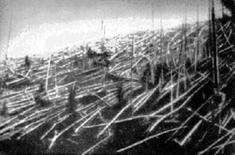 Tunguska event - Trees knocked over by the Tunguska blast. Photograph from the Soviet Academy of Science 1927 expedition led by Leonid Kulik.