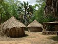 UNESCO Niokolo-Koba National Park Senegal (3686568681).jpg