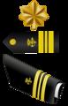 USA - PHS - O4 insignia.png